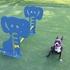 Dog Park Galvanized Steel Hurdle Scene